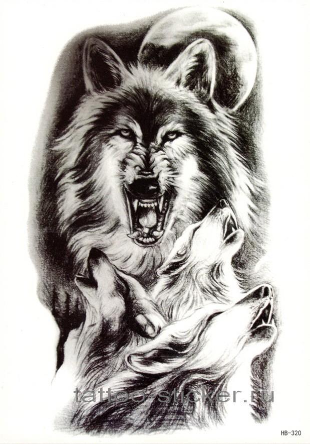 своими тату волка и волчат картинки наличии широкий